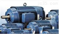 VEM K21R 225S 4 TWS SPM SGB HW电机