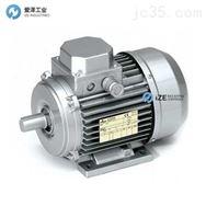 ATB电机CD系列CD160M-4 533855001H