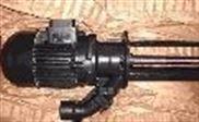 BRINKMANN PUMPS高压泵TAL302/510-2MZ 017